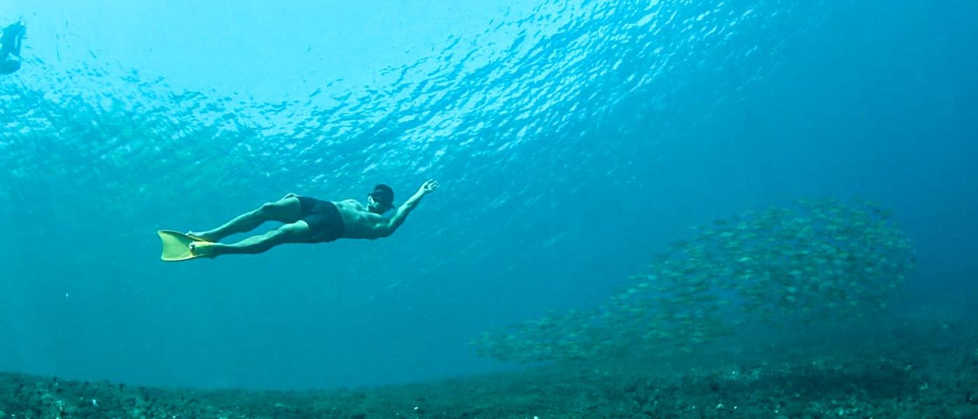 7 Rekomendasi Free Diving Essentials Bagi Pemula