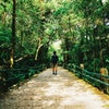 8 Rekomendasi Barang yang Perlu Dipersiapkan untuk Melakukan Solo Travelling
