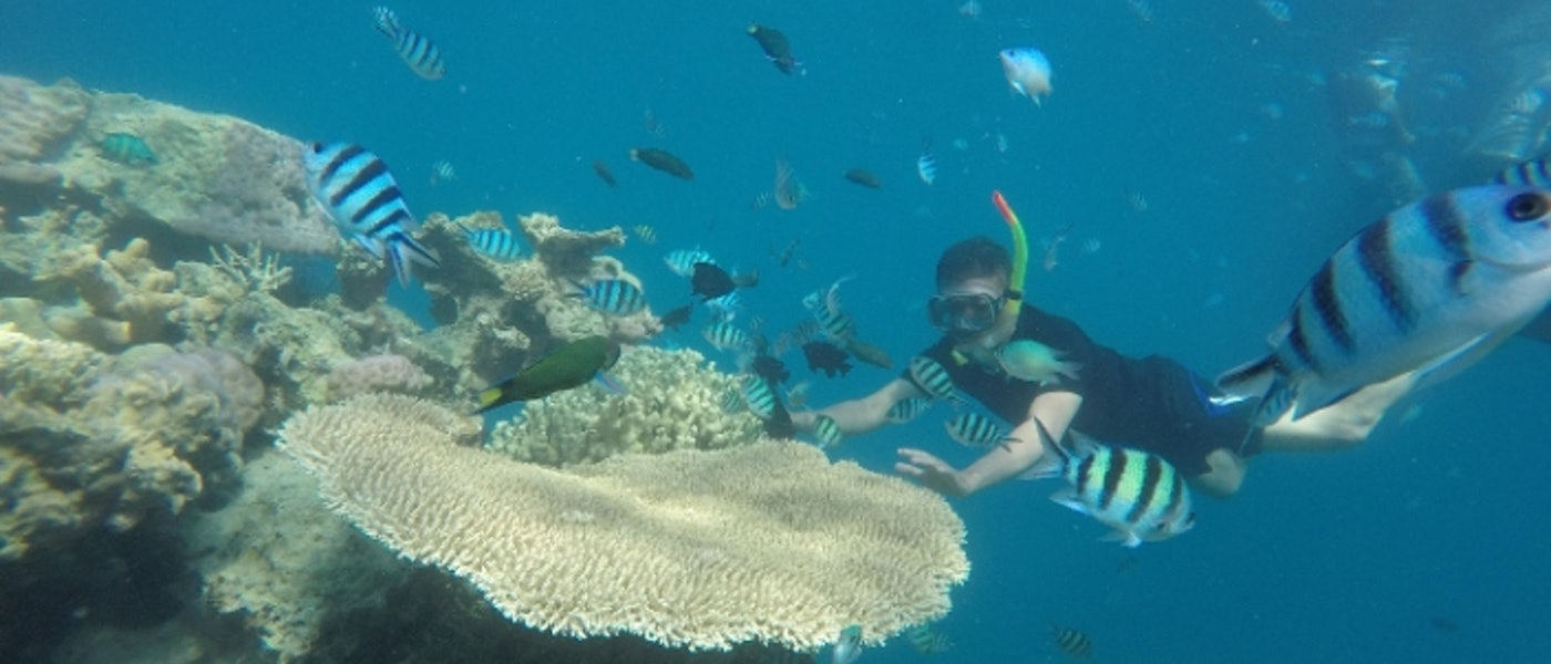 9 Perlengkapan Snorkeling dan Diving Rekomendasi Travel Blogger Dhanang Sukmana Adi