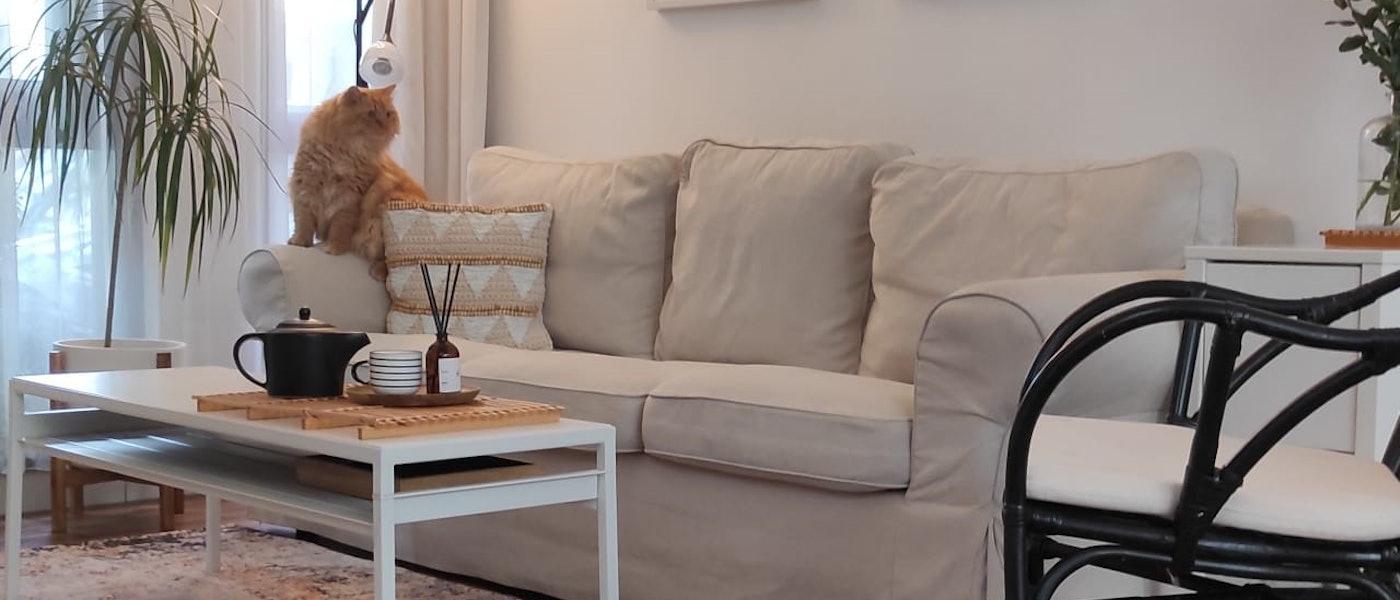 9 Rekomendasi Furnitur dan Dekorasi Ruang Tamu Mungil