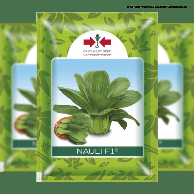 EAST WEST SEED INDONESIA Nauli F1 1