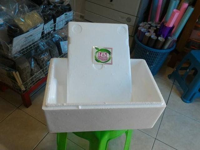 Delapan Belas Hidroponik Box Sterofoam  1