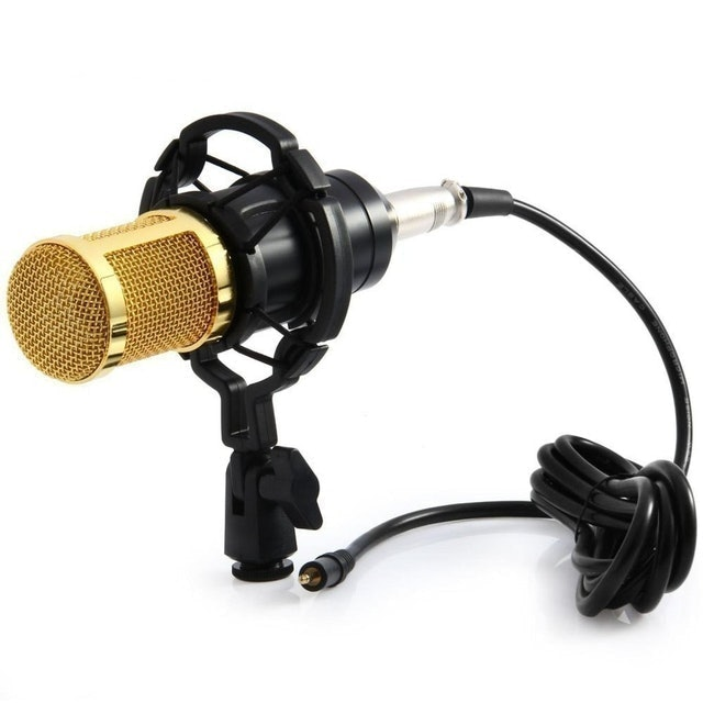 Taffware Professional Condenser Microphone 1