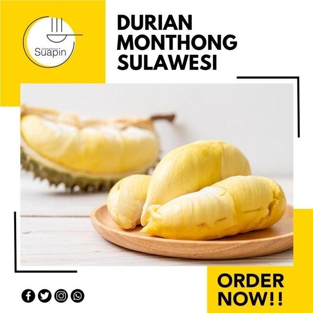 Durian Monthong Palu Sulawesi  1