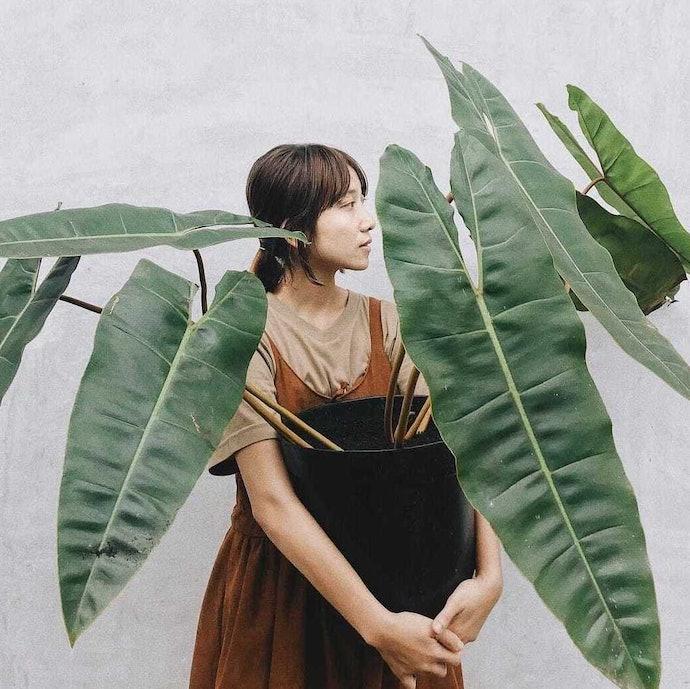 Profil pakar: Gardener dan fotografer, Yuiimii