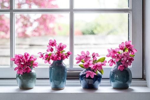 Untuk menghias rumah, pilih bunga yang ukurannya < 35 cm