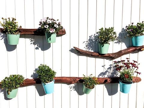 Dinding dan pintu, hadirkan bunga tanpa makan tempat