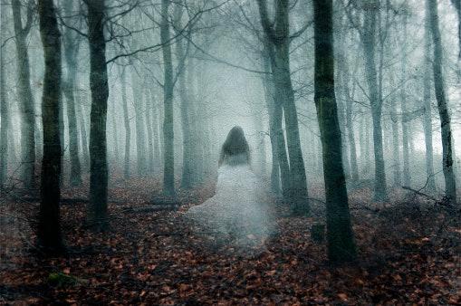 Horor: Pencinta cerita seram real story wajib merapat