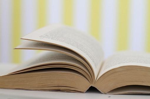 Perhatikan jumlah halamannya
