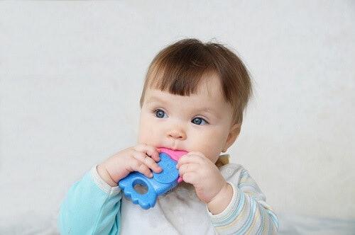 Teether besar dengan tekstur agak kasar, dapat mengurangi rasa gatal dan tidak nyaman di gusi