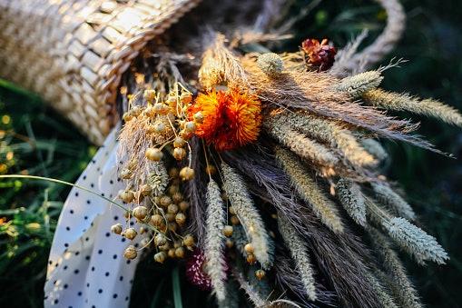Sekilas tentang bunga kering