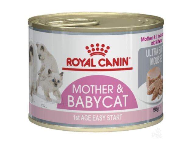 Royal Canin Mother and Babycat Ultra Soft Mousse in Sauce Canned Cat Food 1
