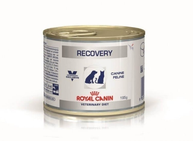 Royal Canin Recovery 1