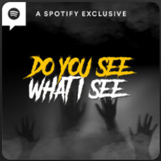 Do You See What I See? 1