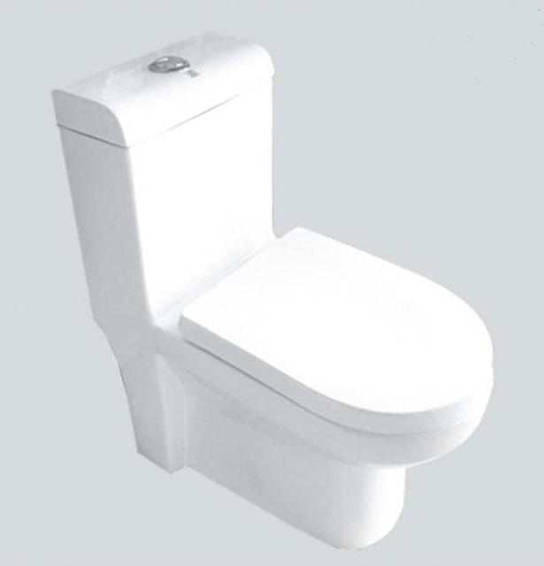 Enchanting Siphonic One Piece Toilet S-Trap 1