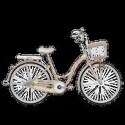 10 Rekomendasi Sepeda Keranjang Terbaik (Terbaru Tahun 2021)